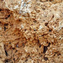 Pietre calcaree in diverse sfumature e dimensioni